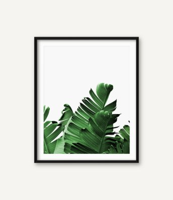 Palm leaf print from serenitywallart on Etsy. Sold for $8.47.